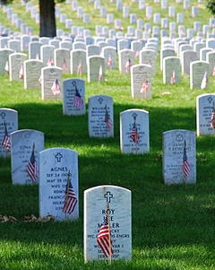 6d0f1-240px-graves_at_arlington_on_memorial_day